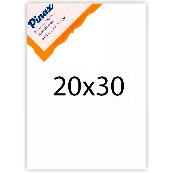 Холст грунтованный на картоне Pinax 280 г 20x30 см, Китай  - купить со скидкой